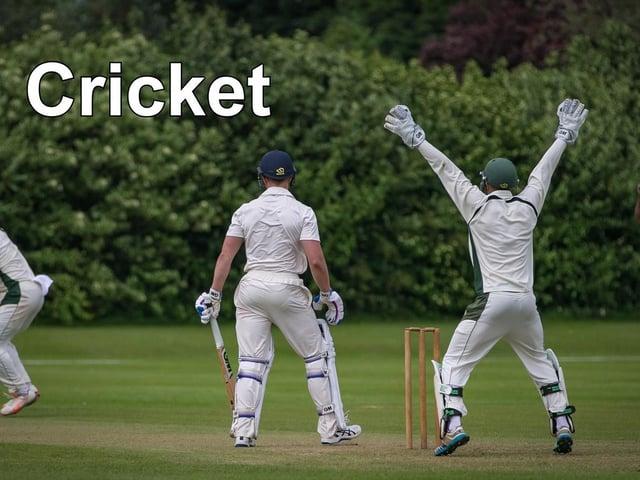 Cricket news.