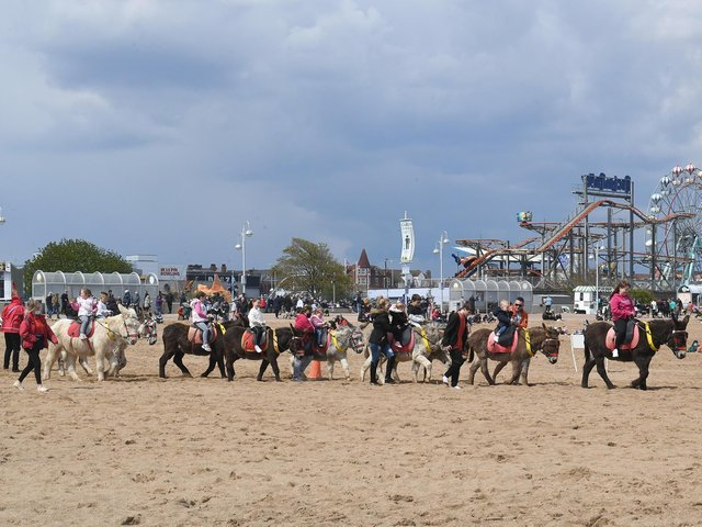Something we could only have dreamed of a year ago - donkeys back on Skegness beach.