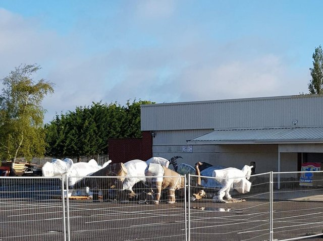 Dinosaurs being stored in Skegness ahead of being installed at the former Model Village site in Skegness.
