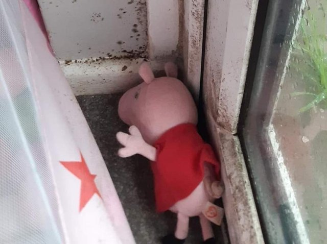Pepper Pig had to be thrown out after being discovered behind a curtain on a windowsill covered in black mould in the property in Horncastle .